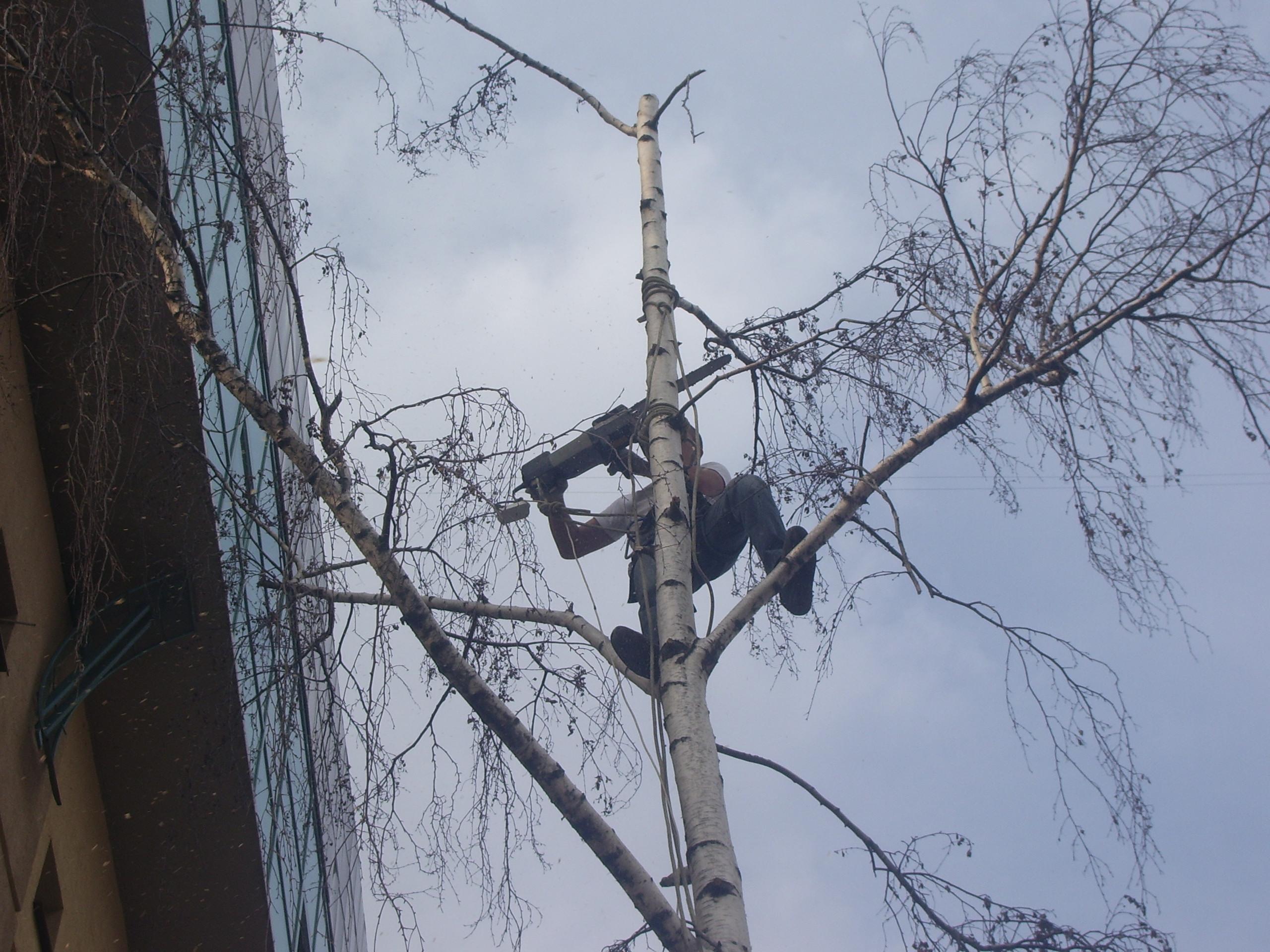 Промышленный альпинизм в г москве